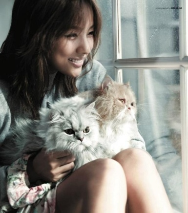 Image result for kpop idols and their pets